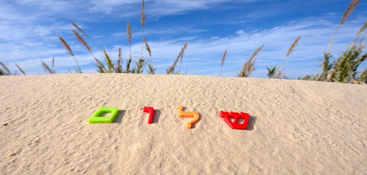 Hebrew Intensive Summer Programs אולפני קיץ - Program Description
